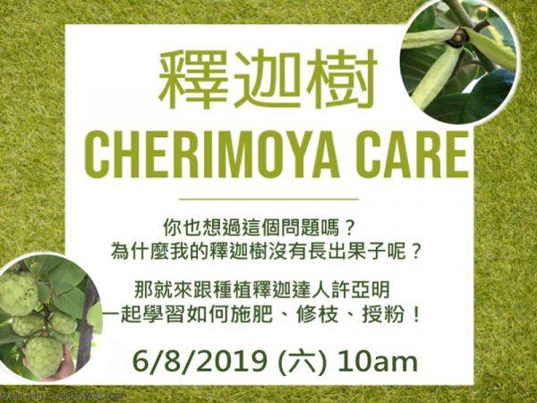 釋迦果樹 Cherimoya-Care