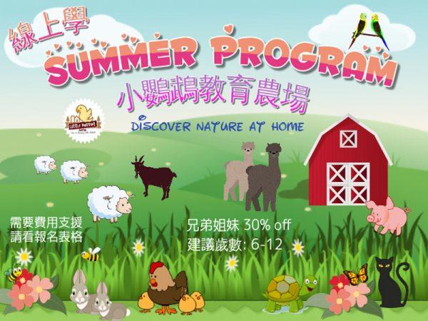 小鸚鵡農場-暑期線上課