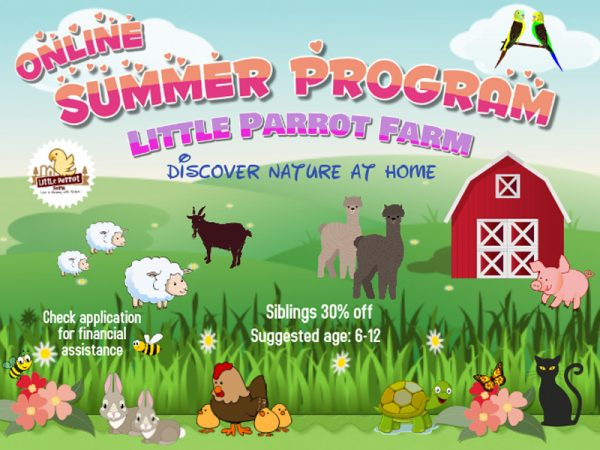 2020 Summer Program Online