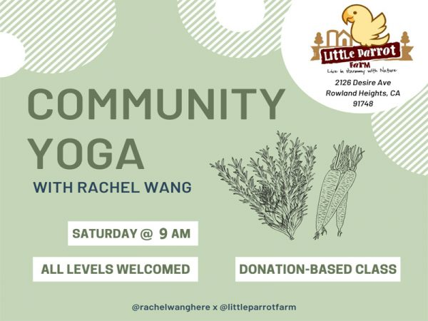 Yoga Saturday at Little Parrot Farm