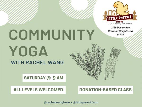 Yoga Saturday at Little Parrot Farm