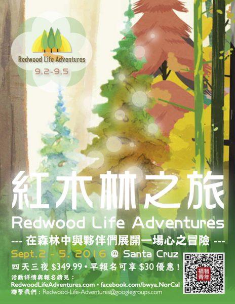 紅木林之旅