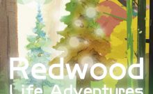 Redwood Life Adventure