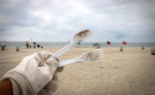 Berkeley Beach Cleanup